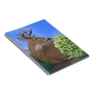 Cervos do fanfarrão do Whitetail Cadernos