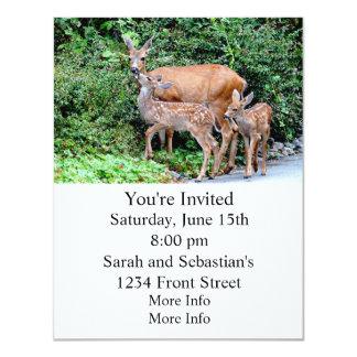 Cervos e família gêmea do animal das jovens corças convite 10.79 x 13.97cm