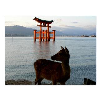 Cervos e porta vermelha grande em Miyajima em Cartão Postal
