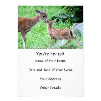 Cervos que beijam a jovem corça convites personalizados