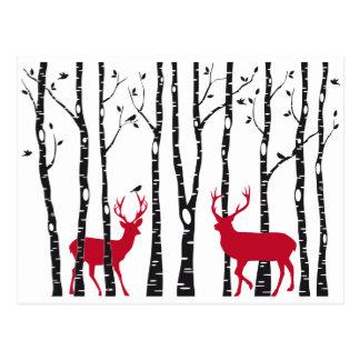 Cervos vermelhos na floresta da árvore de vidoeiro cartão postal