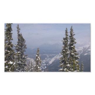 Céu azul do inverno impressão de foto