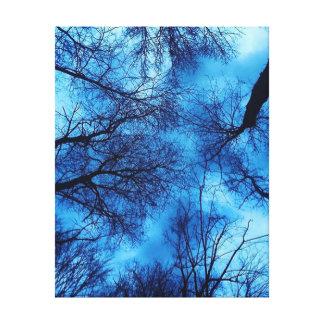 Céu azul na arte preta das canvas das árvores