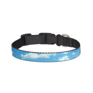 Céu e coleira de cão das nuvens