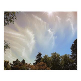 Céu sobre o jardim zoológico de Seattle Impressão De Foto
