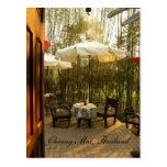Chá da noite pelo bosque de bambu cartão postal