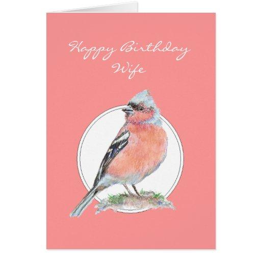Chaffinch, esposa do feliz aniversario cartão