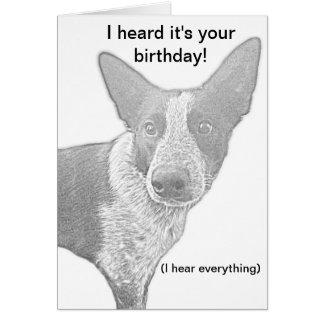 Chalaça do cartão de aniversário do cão
