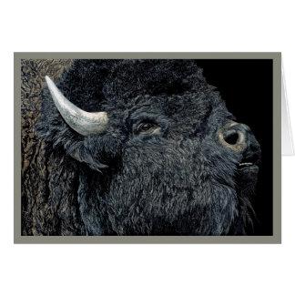"""""""Chamada do cartão do bisonte da pradaria"""" -"""