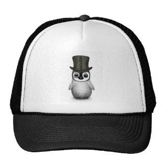 chapéu alto do pinguim do bebê boné