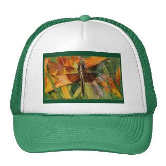 Chapéu amarelo da libélula boné