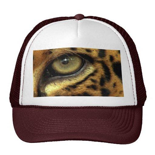 Chapéu asteca manchado do gato grande dos animais  boné