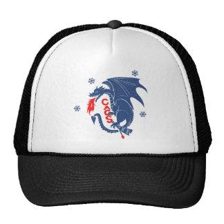 Chapéu azul do dragão bones