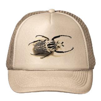 Chapéu com imagem do besouro boné
