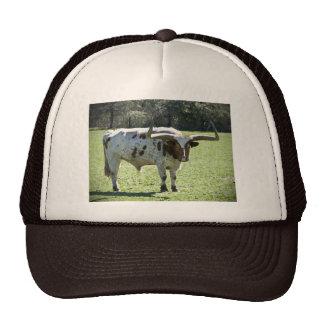 Chapéu com imagem longa da vaca do chifre bones