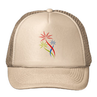 chapéu com os fogos-de-artifício criativos bones