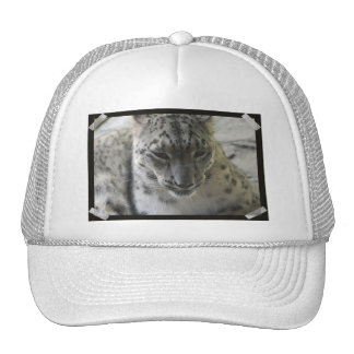 Chapéu de basebol bonito do leopardo de neve bone