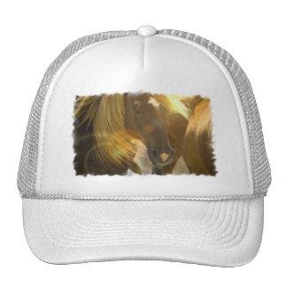 Chapéu de basebol da foto dos cavalos selvagens boné
