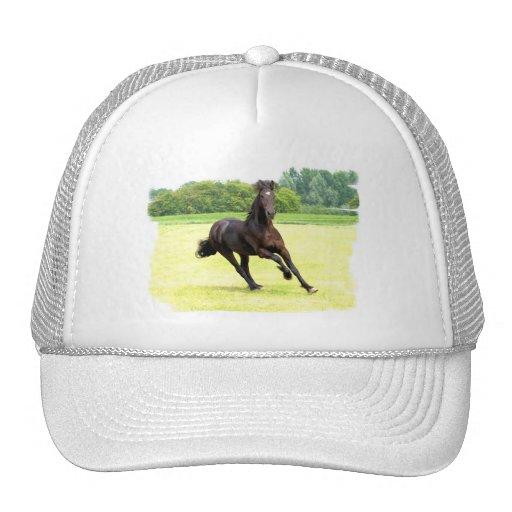 Chapéu de basebol de galope do cavalo boné