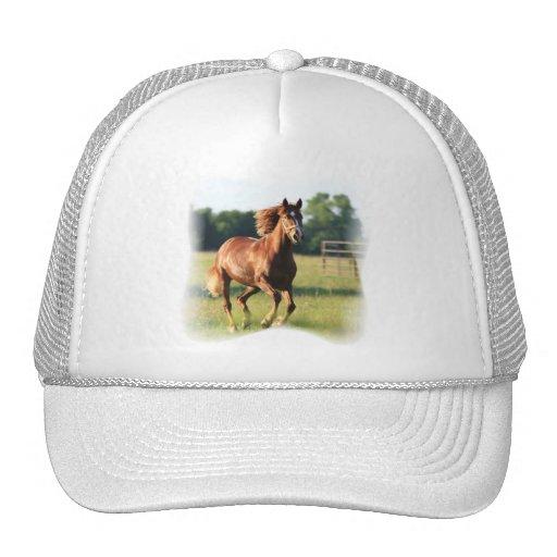 Chapéu de basebol de galope do cavalo da castanha bone