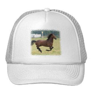 Chapéu de basebol de galope do mustang boné