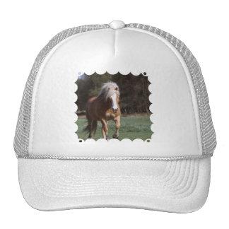 Chapéu de basebol de galope do Palomino Bonés
