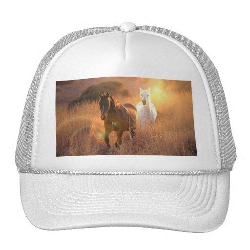 Chapéu de basebol de galope dos cavalos selvagens bonés