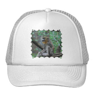 Chapéu de basebol de Mandrill do bebê Boné