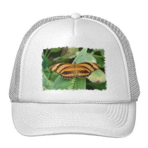 Chapéu de basebol listrado de Butterly Boné