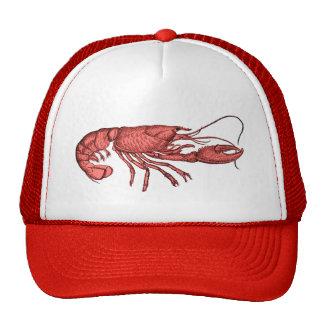 Chapéu de basebol vermelho da lagosta com imagem boné