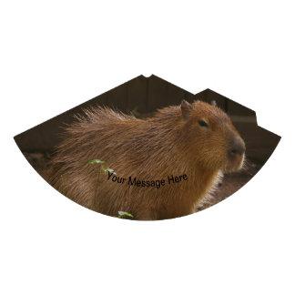 Chapéu De Festa Capybara
