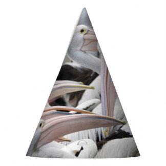 Chapéu De Festa Vagem dos pelicanos