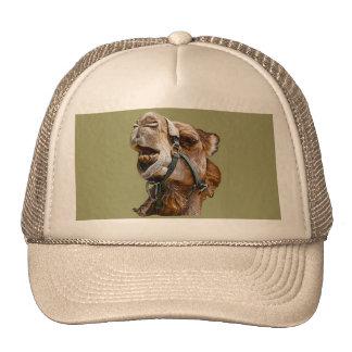 Chapéu de imagem do camelo boné