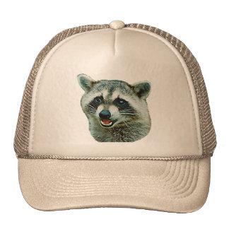 Chapéu de imagem do guaxinim boné