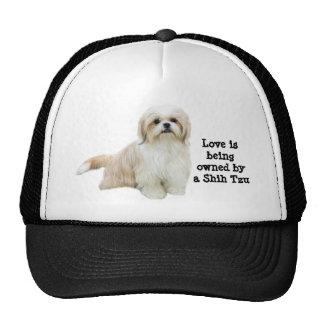 Chapéu de Shih Tzu Boné