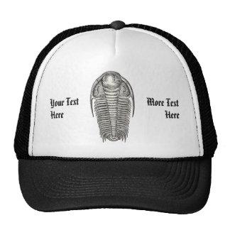 Chapéu de Trilobite do vintage Boné