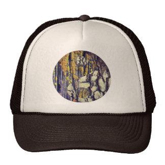 Chapéu de Yin Yang do latido de árvore Bonés