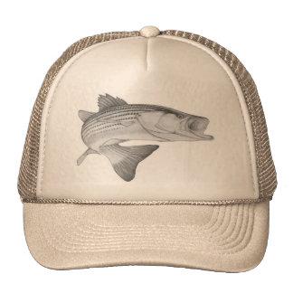 Chapéu do baixo listrado boné