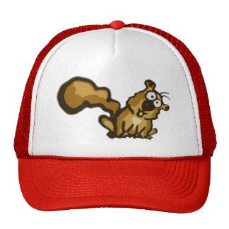 Chapéu do esquilo dos desenhos animados bonés