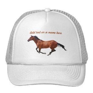 Chapéu do galope do puro-sangue boné