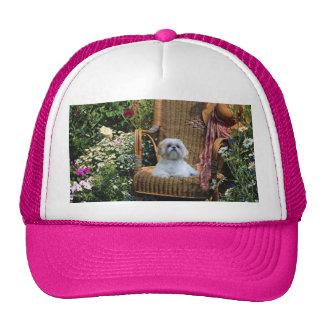 Chapéu do jardim de Shih Tzu Bones