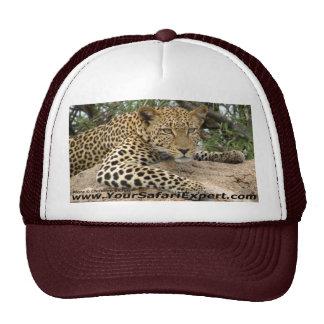 Chapéu do leopardo boné