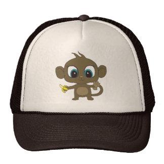 Chapéu do macaco bonés