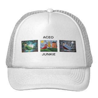 Chapéu do pássaro de ACEO por Lori Everett Boné