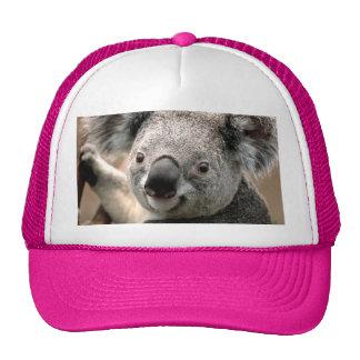 Chapéu do urso de Koala Boné