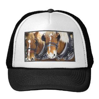 Chapéu dos cavalos de esboço de Clydesdale Boné