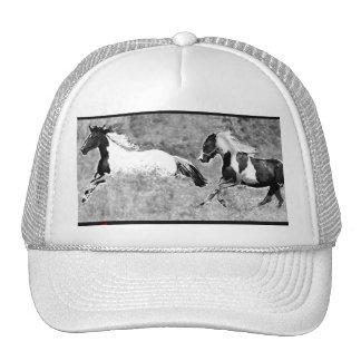 Chapéu dos cavalos do Pinto Bones