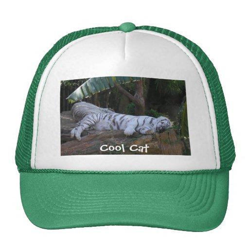 Chapéu legal do tigre do gato boné