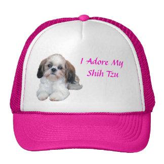 Chapéu que do filhote de cachorro de Shih Tzu eu A Bone