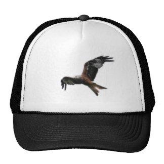Chapéu vermelho do papagaio boné